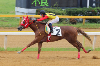 Arao_race_park_20110930_012