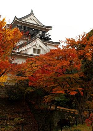 Okazaki_castle